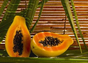 papaya-papaina